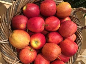 Einheimische Äpfel – ein regionales, saisonales und kostengünstiges Superfood.